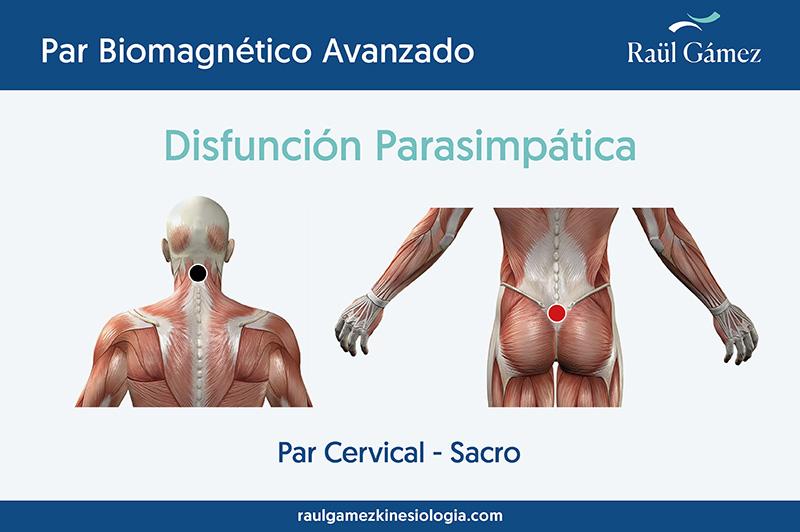 par cervical
